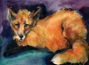Captive Fox